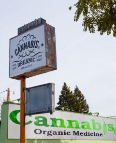 m-for-marijuana